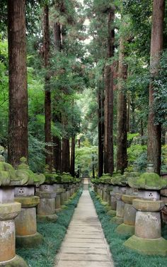 Heirin-ji is a Rinzai temple of the Myoshin-ji branch located in Niiza city, Saitama prefecture, Japan, a city just outside of Tokyo The Places Youll Go, Places To Visit, Beautiful World, Beautiful Places, Saitama Japan, Saitama City, Saitama Prefecture, Japanese Landscape, Japanese Culture