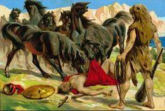 Cavalos de Diomedes