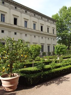 Coming inside this wonderful piece of Italian history http://erbeitalianskincare.blogspot.it/2014/05/visiting-another-italian-botanical.html