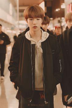 Cre : on pic Nct U Members, Nct Dream Members, Nct 127, Huang Renjun, Kpop, Winwin, Mark Lee, Taeyong, K Idols