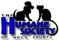 Without the Humane Society I would've never found my Beagle. If you can't donate money, donate your time! *DONE! -CeCeM*