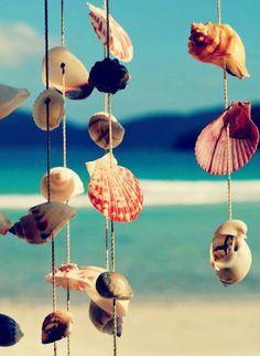Sea shell wind chimes