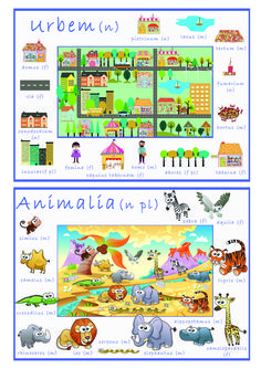 Posters from the set of Latin Vocabulary prints.