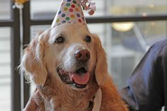 Bretagne traveled to New York to celebrate her sweet 16 and be honored for her weeks of service at Ground Zero.