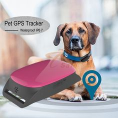 New Waterproof Pet GPS Tracking Device+dog Tracker GPS Pets Tracker/IOS App and Andriod App Pet gps tracker