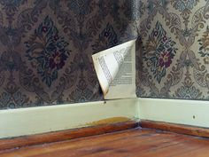 164. 164, that's what it said, printed with strong typewriting strokes, under the peeling corner of the bedroom wallpaper. Page 165 soon followed, apparently glazed on the back of said tarnished wallpaper, teasing her with novel possibilities. Curiously, however, she found no other pages in the vicinity. #164.