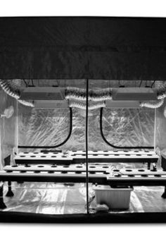 4X8 Grow Tent I really like this system. It is a great piece of furniture to have in your house. A super grow box can save you thousands of dollarsu2026  sc 1 st  Pinterest & 4X8 Grow Tent I really like this system. It is a great piece of ...