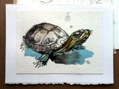 Turtle Rescue Team Cards by Abby Diamond, via Behance