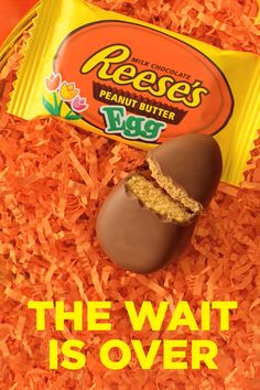 REESE'S Peanut Butter Eggs are here! The perfect combination of peanut butter and chocolate, in a classic egg shape. Perfect for Easter baskets. Peanut Butter Eggs, Chocolate Peanut Butter, Chocolate Desserts, Chocolate Coffee, Vegan Chocolate, Chocolate Cake, Delicious Desserts, Dessert Recipes, Yummy Food