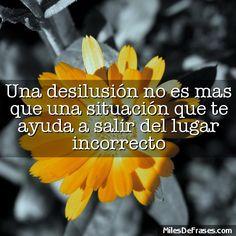 Una desilusión no es mas que una situación que te ayuda a salir del lugar incorrecto