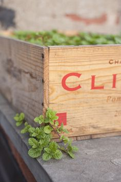 Create a repurposed wine crate planter