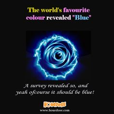 "The world's favourite colour revealed ""Blue"""
