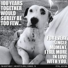 Pet Parenting Truth ❤ #mcaspets #pets #family