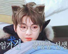 PANDANIEL_471.gif (650×510) Daniel K, Happy Pills, Pop Bands, 3 In One, Handsome Boys, Korean Singer, Cat Ears, Boy Groups, Chibi