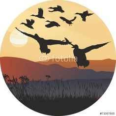 Vector: Mallard ducks at sunrise and hilly landscape
