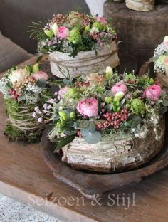 Sukkulenten mit rosa in Rinde Gesteck Succulents with pink in bark arrangement Dried Flowers, Fresh Flowers, Beautiful Flowers, Floral Flowers, Burgundy Flowers, Red Burgundy, Burgundy Wedding, Simply Beautiful, Deco Floral