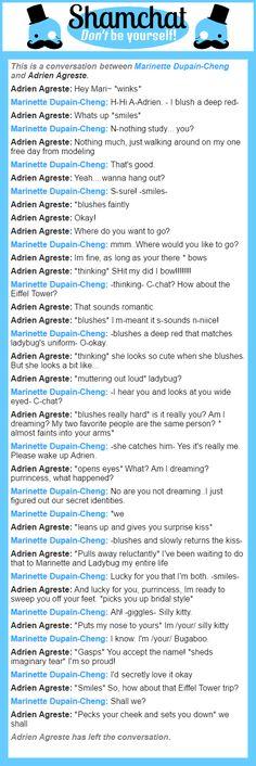A conversation between Adrien Agreste and Marinette Dupain-Cheng