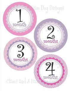 Monthly Milestone Stickers Girls monthly by ClamsAndaHamDog, $9.00