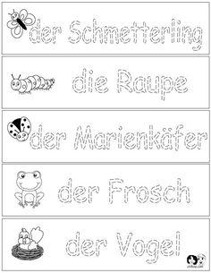The Five Senses - German Printout | German Worksheets for Children ...