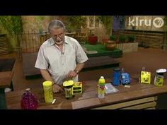 John Dromgoole wasp and fly control:  Central Texas Gardener