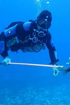 Playa del Carmen - Things To Do - Fishing - Lionfish Hunting Diving - Tour Image 06