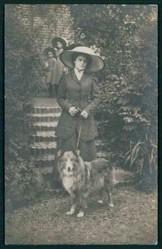 Collie Dog Studio Private Real Photo original old 1910s postcard