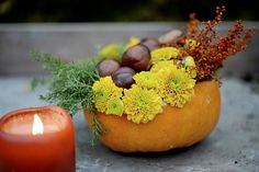 décoration citrouille d'automne avec des chrysanthèmes jaunes, des châtaignes et des herbes Botanical Illustration, Pansies, Pumpkin, Fruit, Vegetables, Flowers, Diy, Food, Halloween Stuff