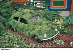 Funny VW Beetles | Crazy pics