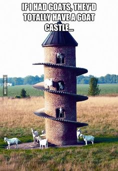 If I had goats.... for sure. I'd have tons of wild, free animals who loved my family & I and I'd build them all kinds of fun stuff! Hey, it's my FAIRY TALE life, after all. :D