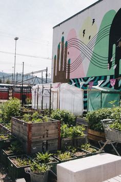 every city should have community gardens!