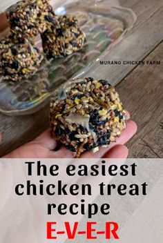 The easiest chicken treat recipe ever! Super easy to make with whatever bird seed you have on hand!