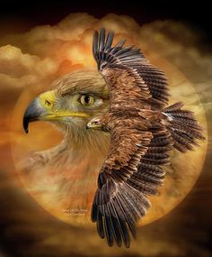 Eagle divine spirit of the wind soaring between the heavens and the earth. You are a mysterious and magical connection between the spiritual and material world rising above so free and fearless guiding us with power and grace toward our own higher truths.  Spirit Of The Wind prose by Carol Cavalaris