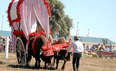 La cultura de los carreteros http://www.rural64.com/st/turismorural/La-cultura-de-los-carreteros-5054