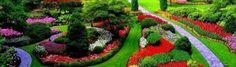 Armonizeaza-ti organismul cu Bioharmonex . Organismul uman poate fi considerat un ciclu care funcţionează fără încetare. Acesta execută încontinuu autocorectări pentru a-şi menţine echilibrul ideal, necesare din cauza modificărilor constante ale circumstanţelor interne şi externe. Această adaptabilitate, cu ajutorul căreia… Plants, Plant, Planets
