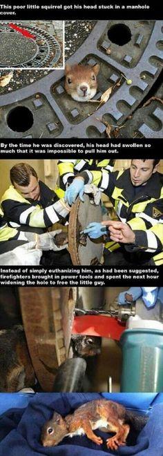 Beautiful people helping beautiful creatures. :) just beautiful