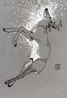 #deer #art #illustration