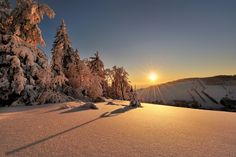 Winter Gold by Pawel Kucharski Light Of Life, Light Of The World, Beautiful World, Beautiful Places, Winter Sun, Cozy Winter, Landscape Wallpaper, Winter Pictures, Winter Scenes