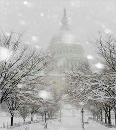 Winter in D.C.
