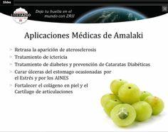 Aplicaciones medicas del amalaki