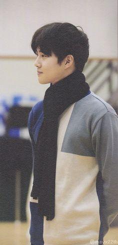 Warm prince