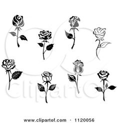 Clipart Of Black And White Rose Flowers - Royalty Free Vector Illustration by Seamartini Graphics