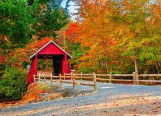 Campbell's Covered Bridge is the last remaining covered bridge in SC. It was built in 1909 and is located in Greenville Co, near the small town of Gowensville