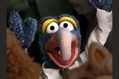 Who Is Your Muppet Husband? Playbuzz Quizzes, Parrot, Husband, Bird, Superstar, Felt, Animals, Colorful, Fictional Characters