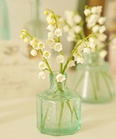 French Larkspur: lily of the valley