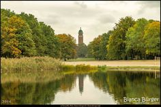 Volkspark Jungfernheide (Okt 2016) - Blick zum Wasserturm  #Berlin #Deutschland #Germany #biancabuergerphotography #igersgermany #igersberlin #IG_Deutschland #IG_berlincity #ig_germany #shootcamp #shootcamp_ig #pickmotion #berlinbreeze #diewocheaufinstagram #berlingram #visit_berlin #Herbst #autumn #canon #canondeutschland #EOS5DMarkIII #5Diii #Natur #nature #Landschaft #landscape #Charlottenburg