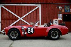 FIA 289 Cobra.