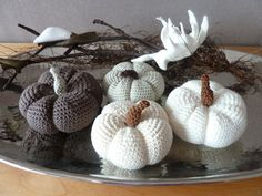 pumpkins crochet, The whie look lovely!
