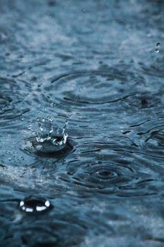 rain drops by seaturtleheather