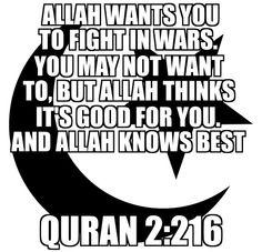 Just show this to anyone who says Islam is peaceful. #exposingthelieofislam #Islam #muslims #terrorism