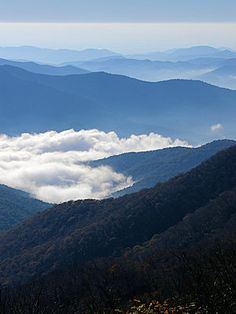 Blue Ridge Parkway - mile by mile info  We've done it in the fall, maybe again this spring?